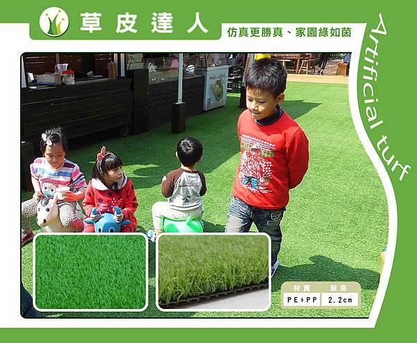 22mm綠捲草網拍銷售形象頁