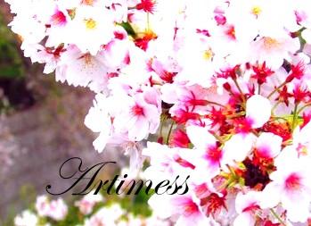 flower2013004