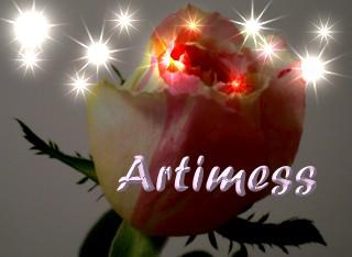 RosePink.jpg