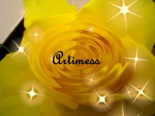 黃玫瑰.jpg