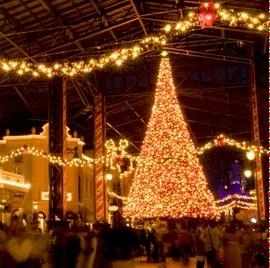 聖誕樹TDRL02.jpg