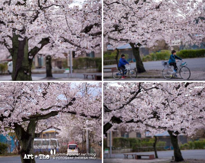 Ngatoro_09.jpg