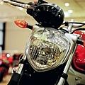 Yamaha FZ6N