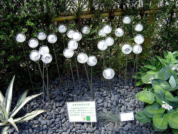 太陽能花叢
