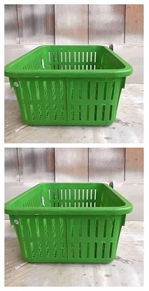 Green basket.jpg