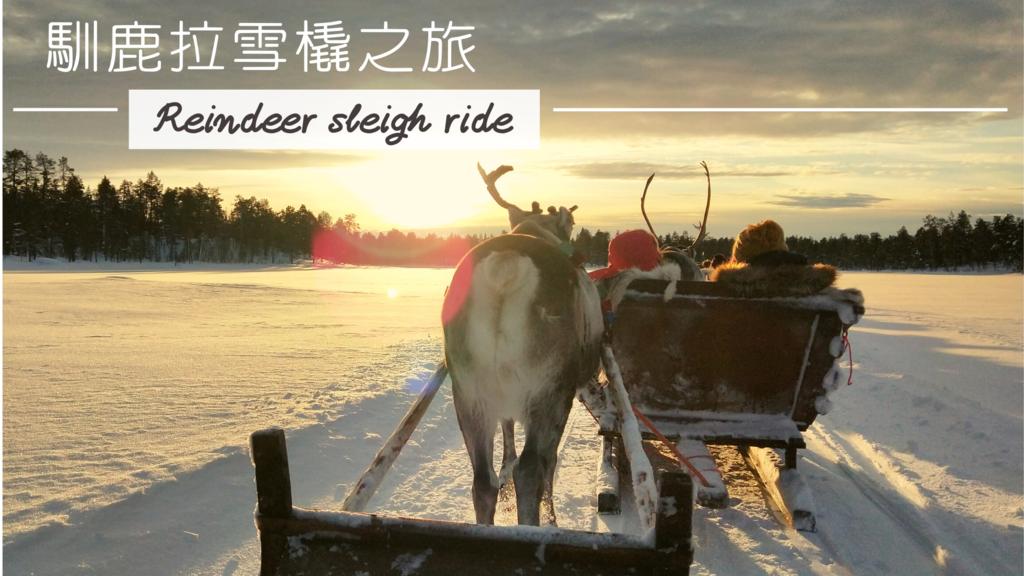 Inari 馴鹿拉雪橇