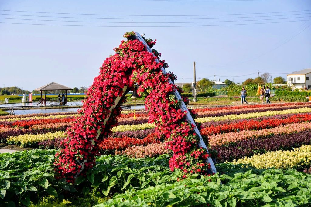 中社觀光花市6201.jpg