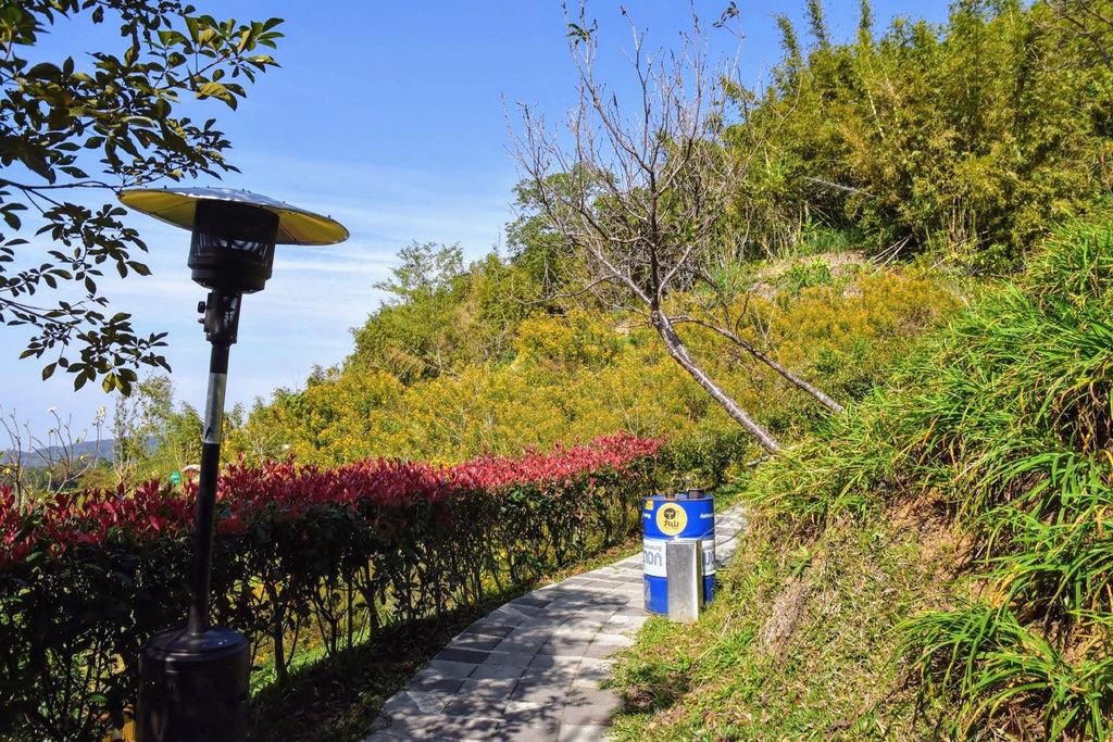 丸山咖啡7052.jpg