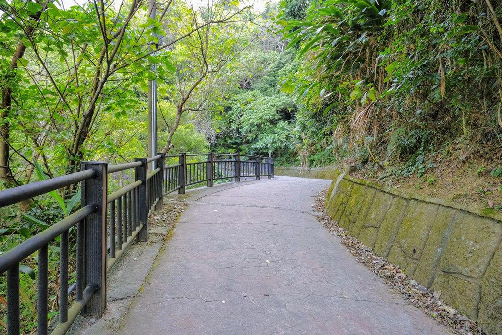 大坑登山步道4750.jpg