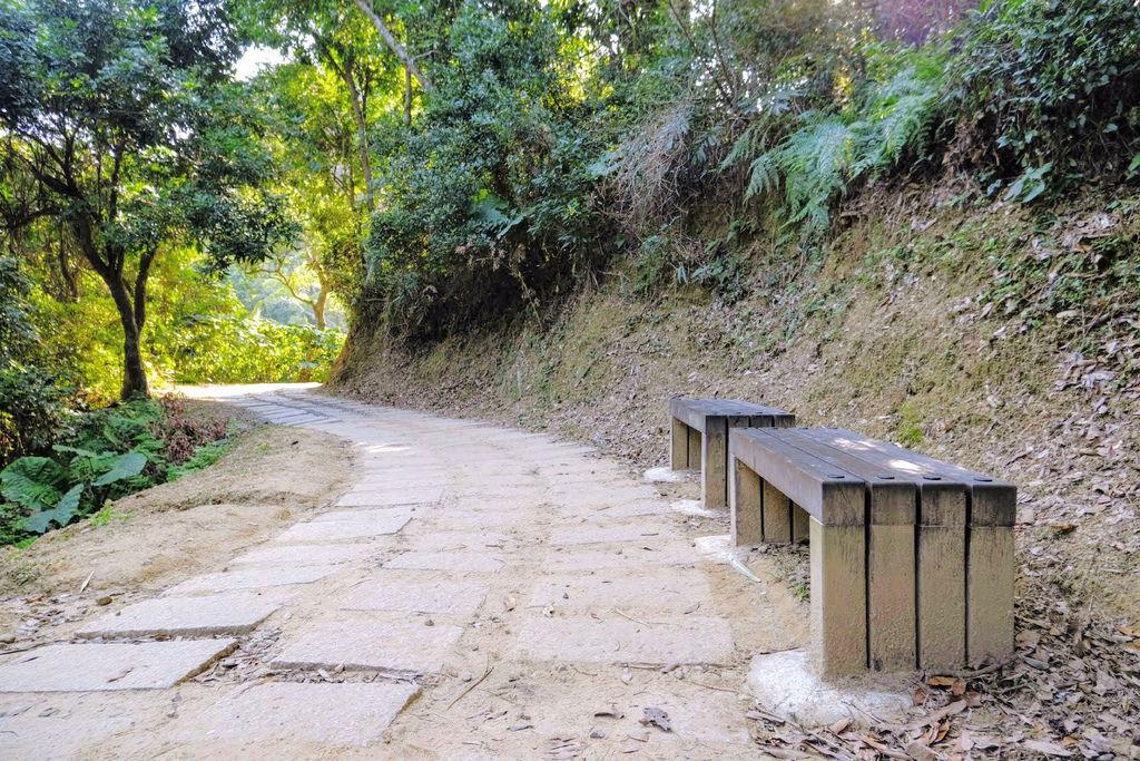 大坑登山步道4771.jpg