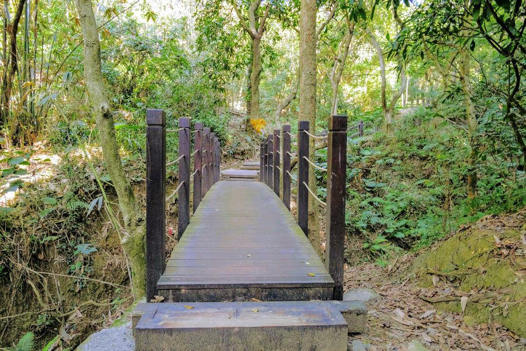 大坑登山步道4784.jpg