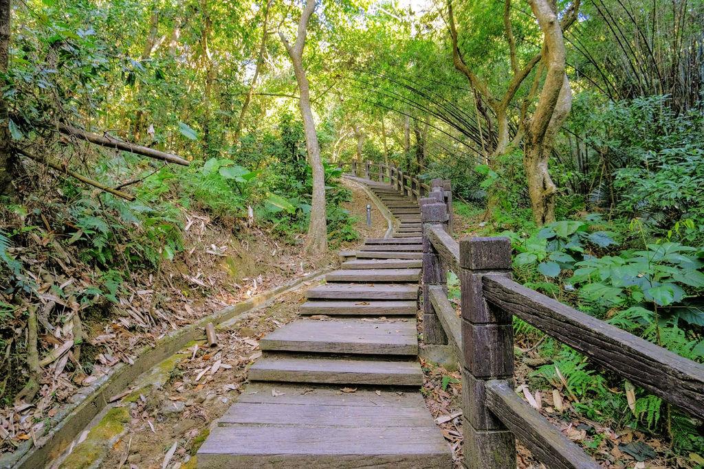 大坑登山步道4785.jpg