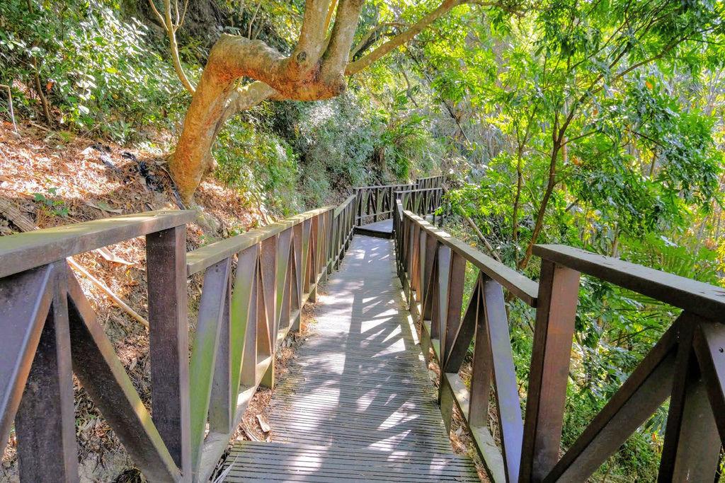 大坑登山步道4855.jpg