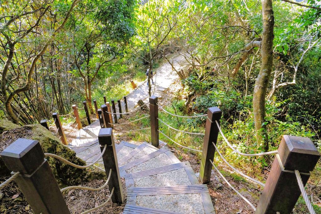 大坑登山步道4875.jpg