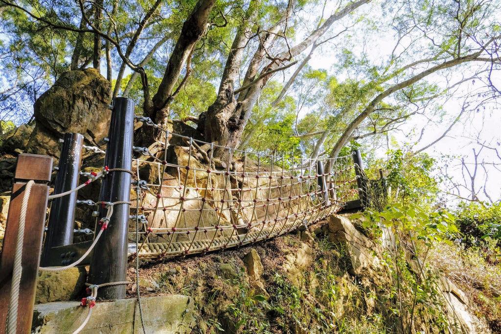 大坑登山步道4889.jpg