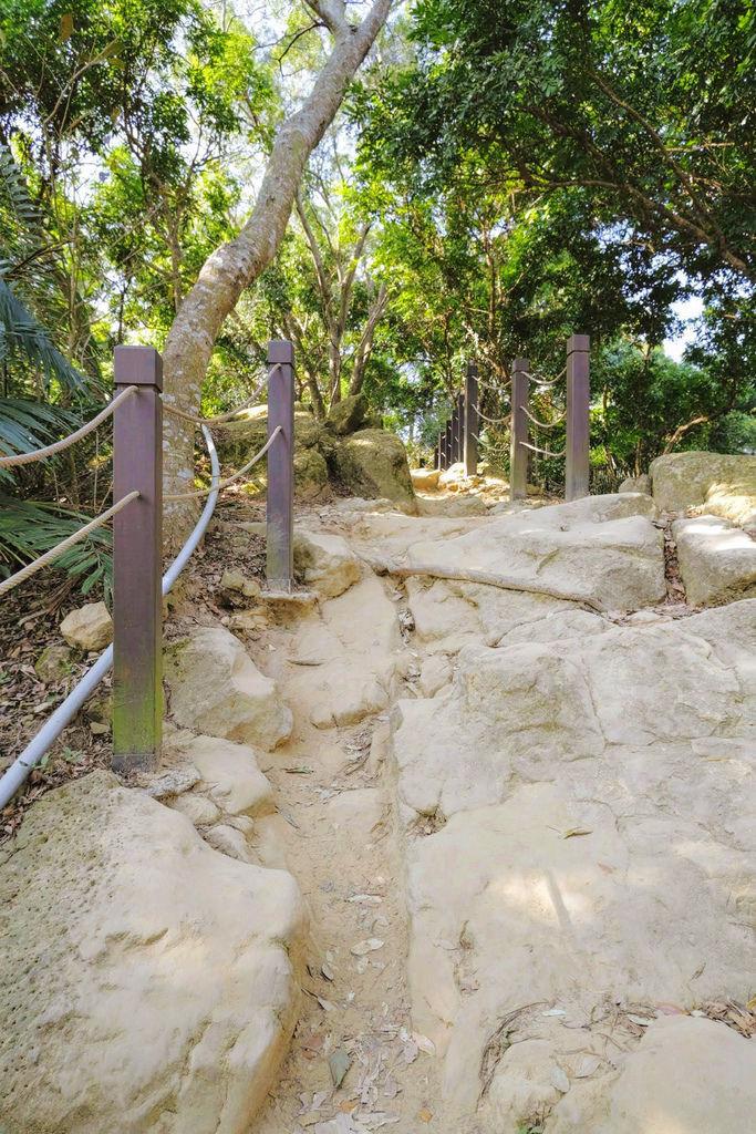 大坑登山步道4900.jpg