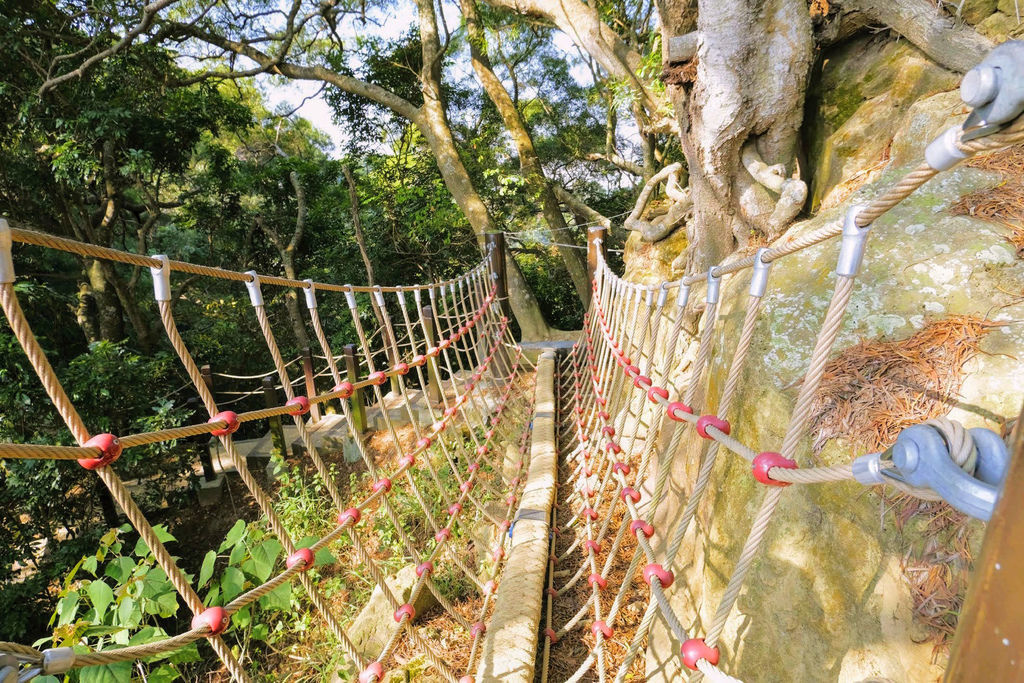 大坑登山步道4884.jpg