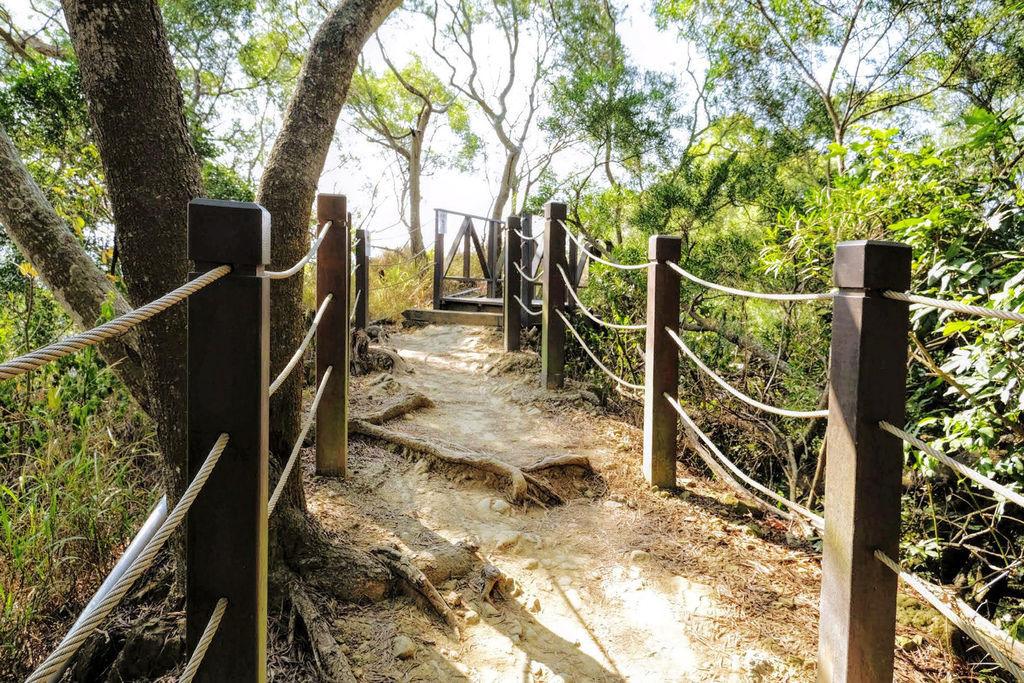 大坑登山步道4911.jpg