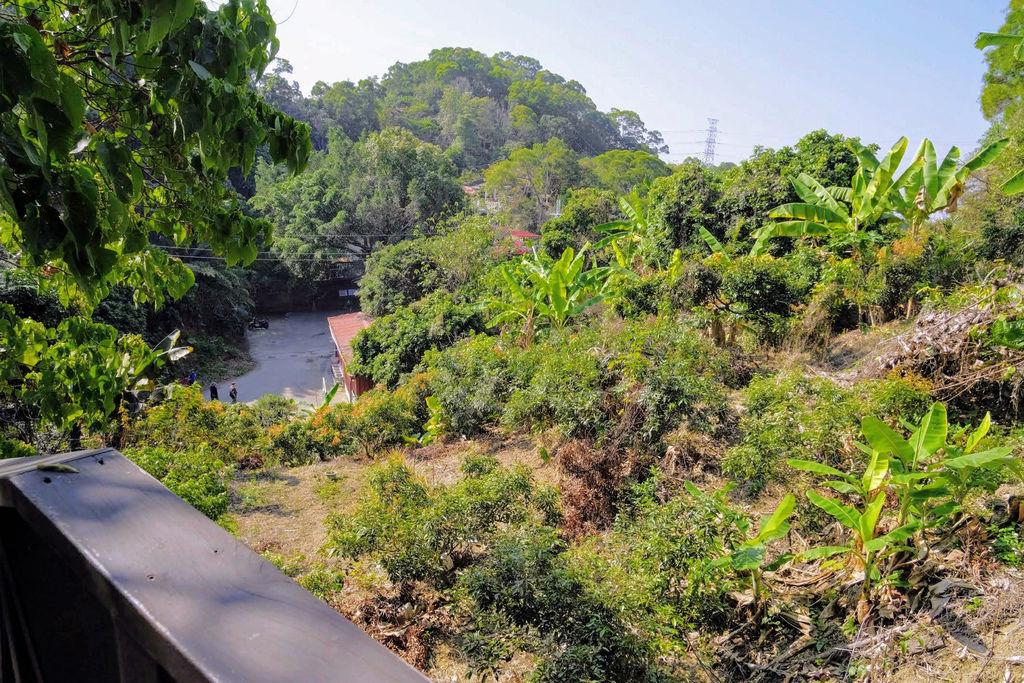 大坑登山步道4930.jpg