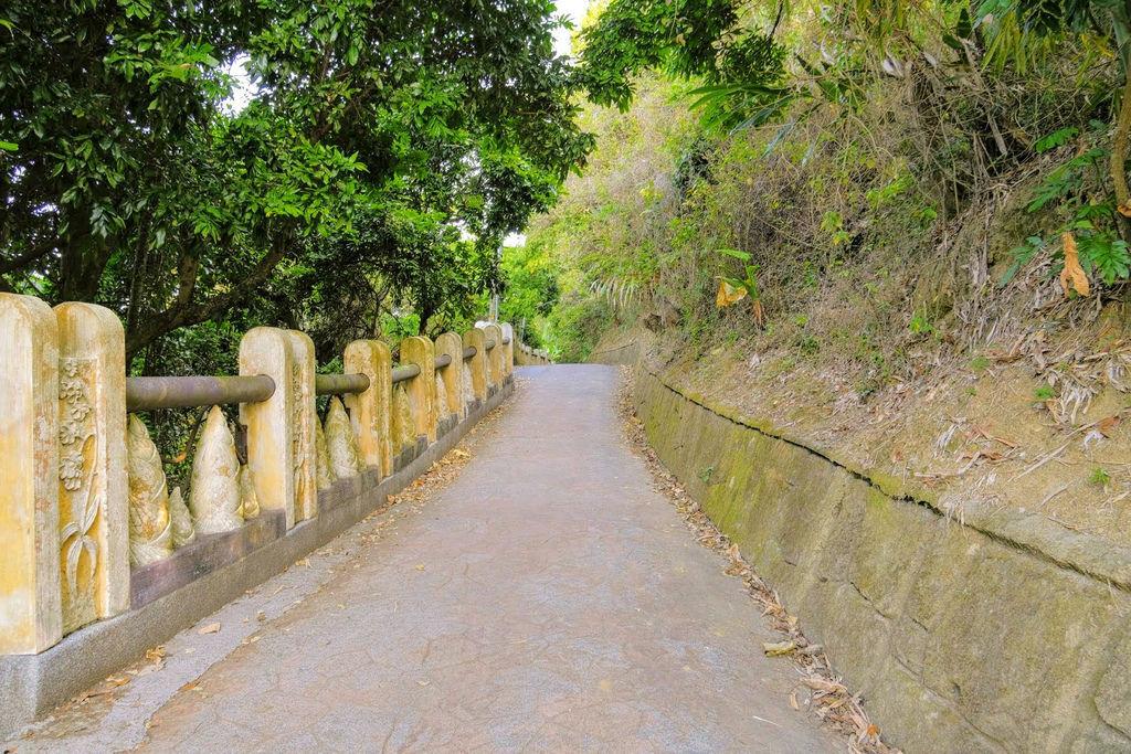 大坑登山步道4739.jpg