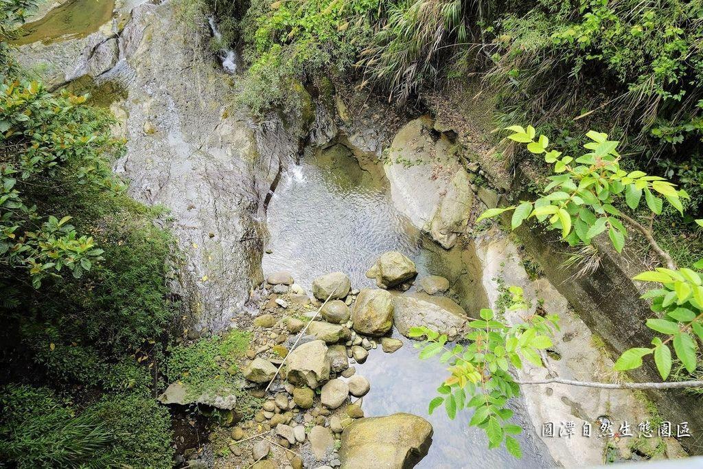 圓潭自然生態園區_DSF8077.jpg