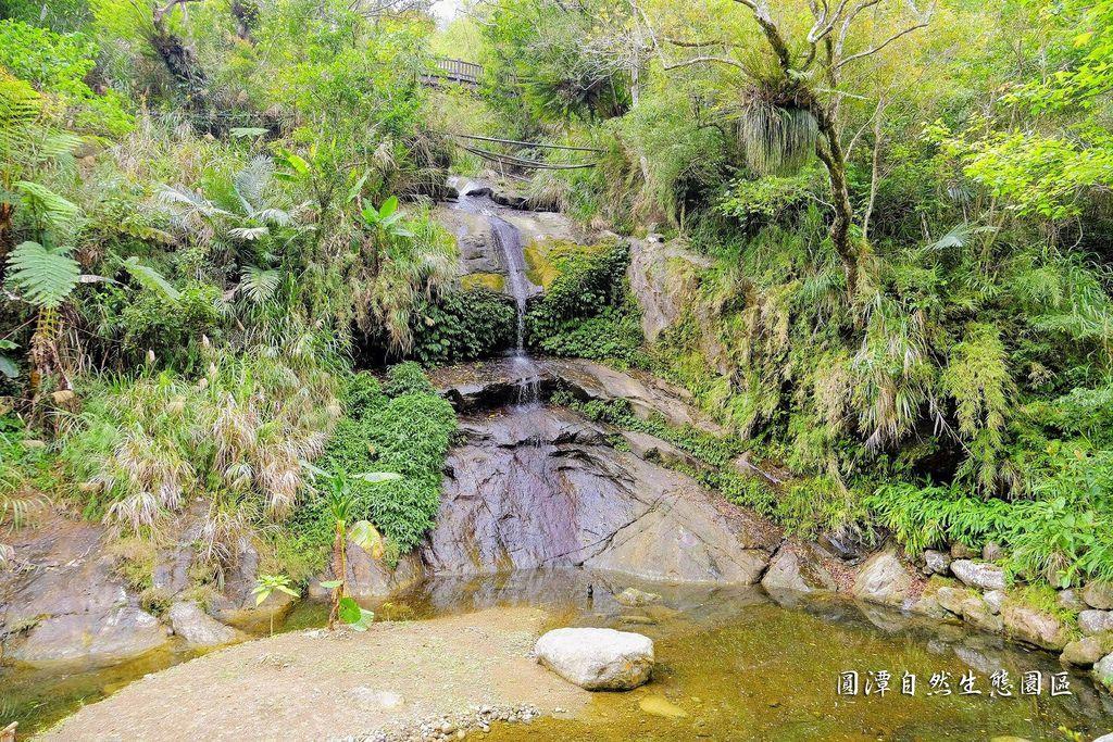 圓潭自然生態園區_DSF8096.jpg