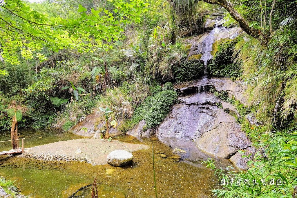 圓潭自然生態園區_DSF8105.jpg