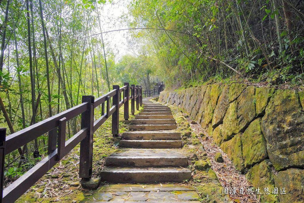 圓潭自然生態園區_DSF8109.jpg