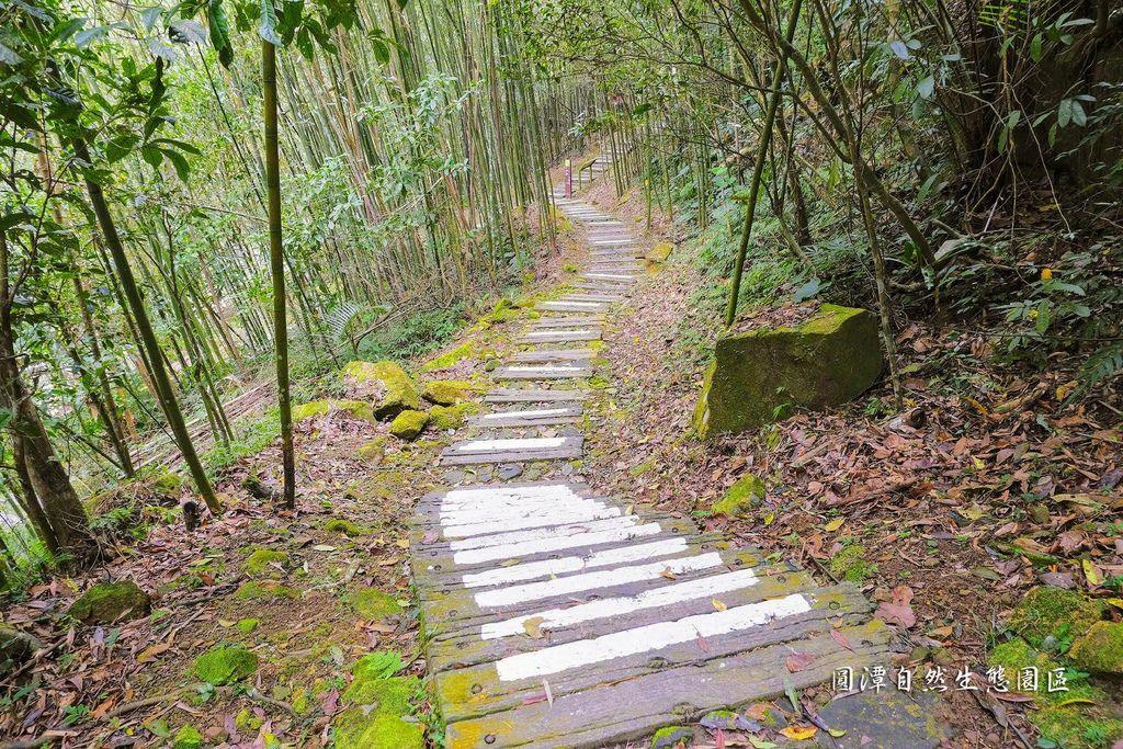 圓潭自然生態園區_DSF8139.jpg