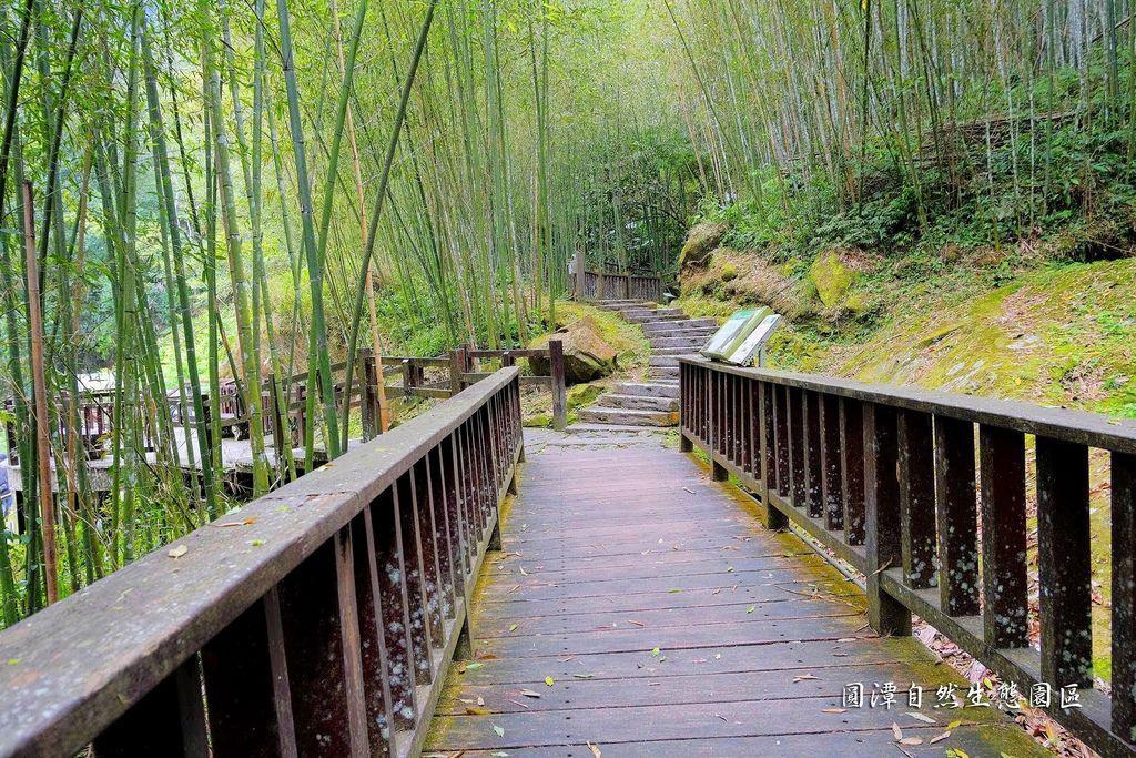 圓潭自然生態園區_DSF8146.jpg