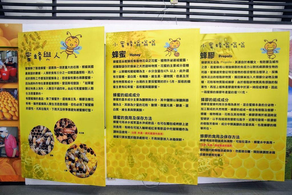 南化遊客中心_9796.jpg