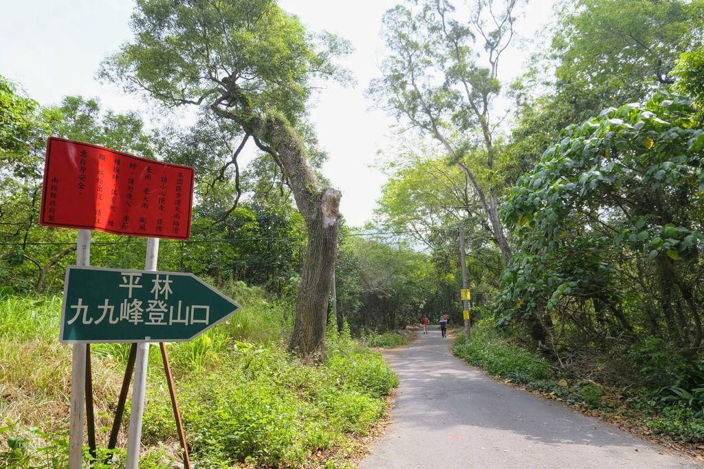 九九峰森林步道_DSF9059.jpg