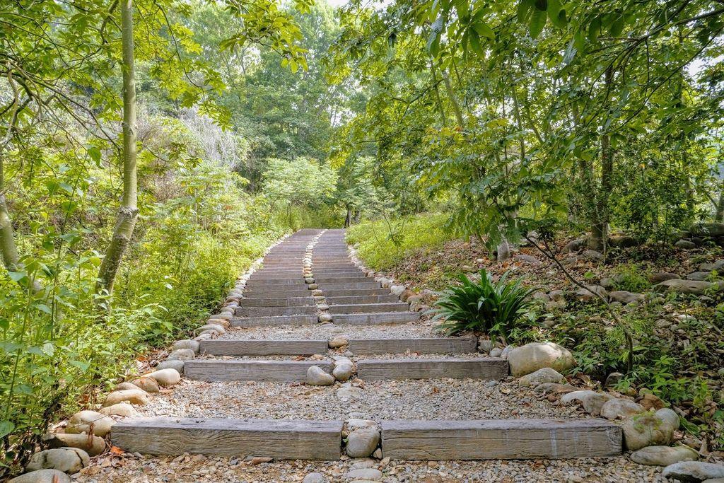 九九峰森林步道_DSF9111.jpg