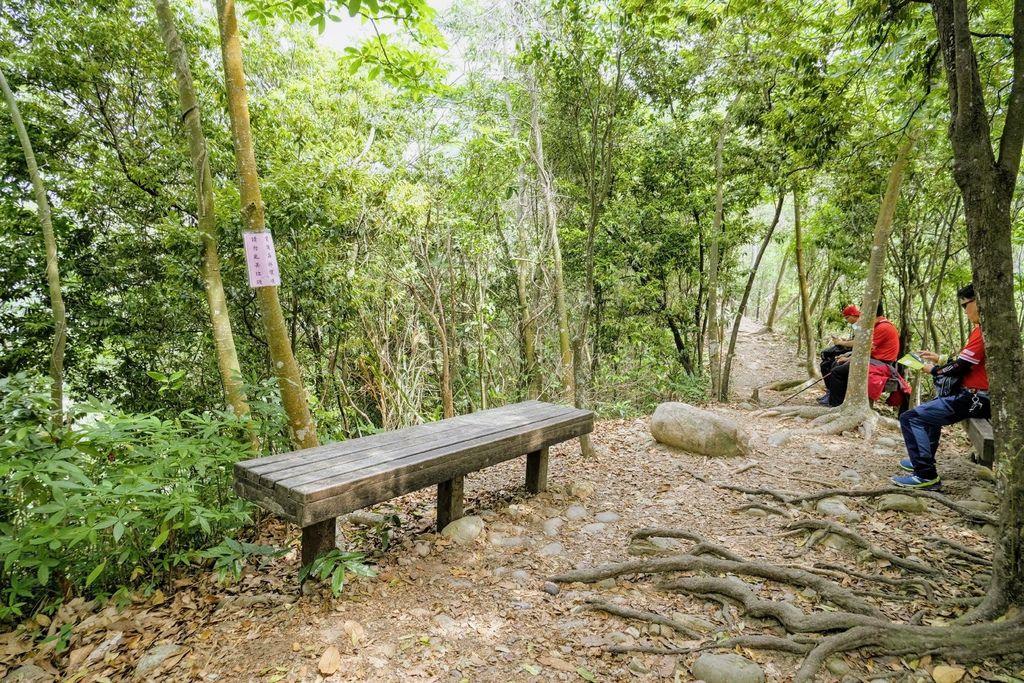 九九峰森林步道_DSF9185.jpg