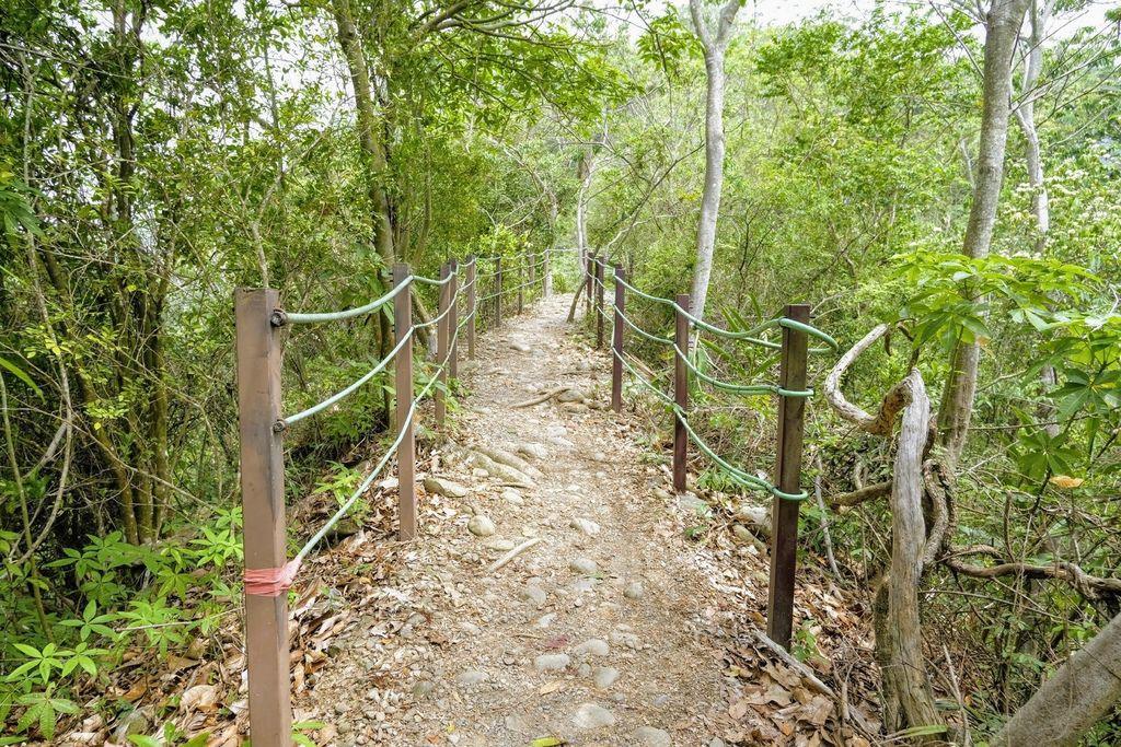 九九峰森林步道_DSF9186.jpg