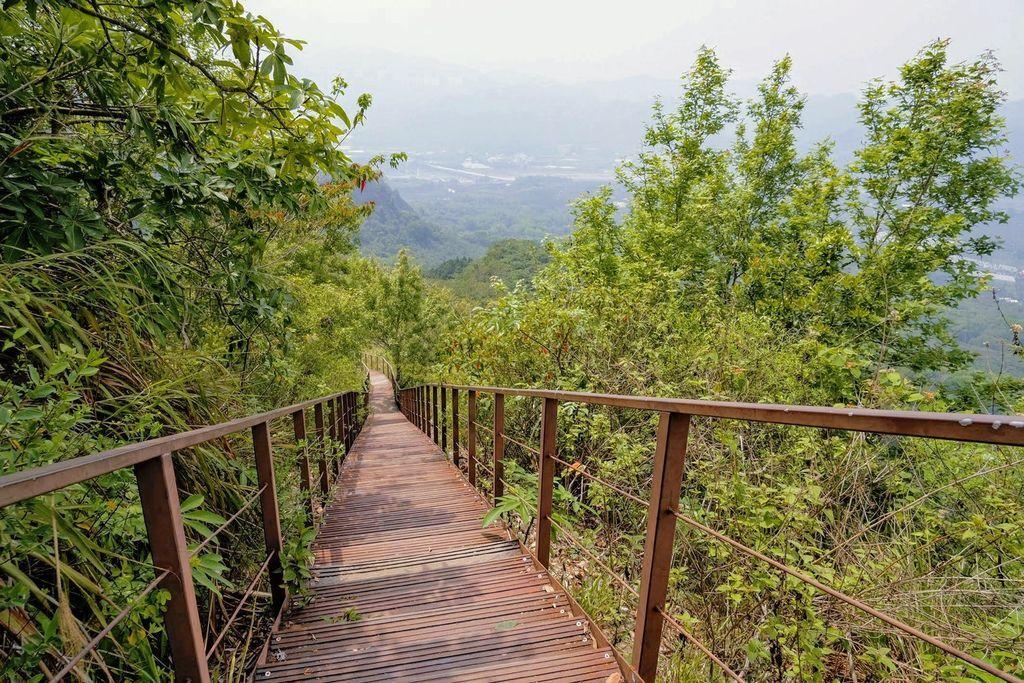 九九峰森林步道_DSF9234.jpg