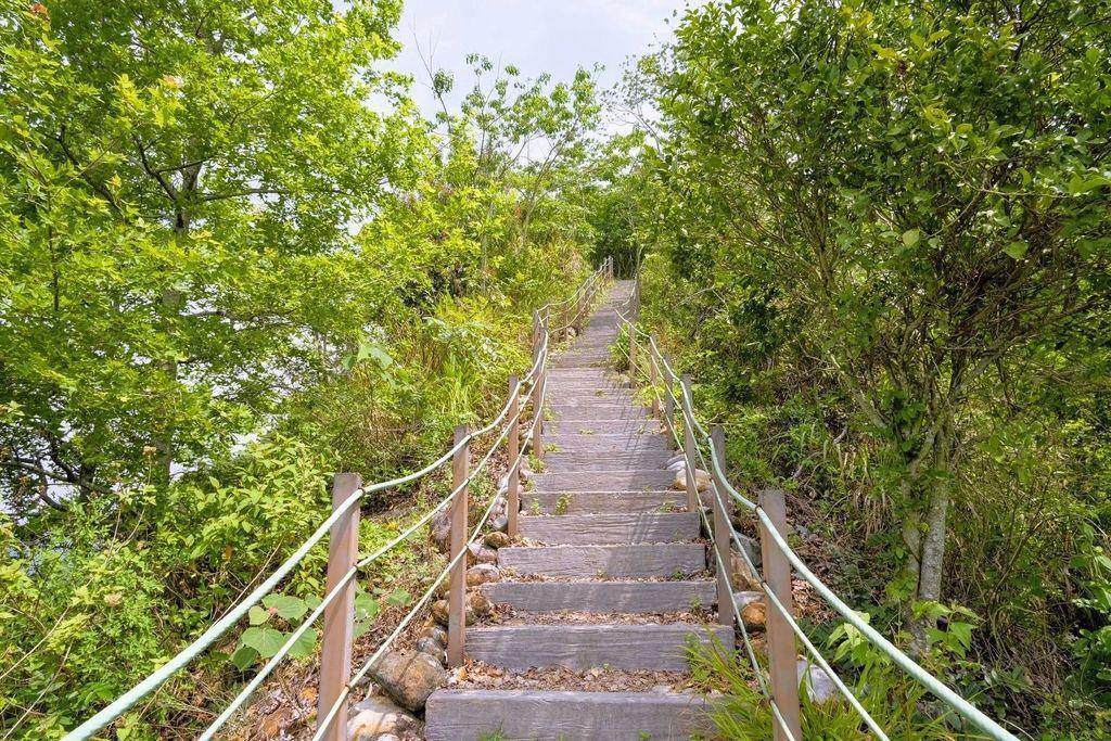 九九峰森林步道_DSF9251.jpg