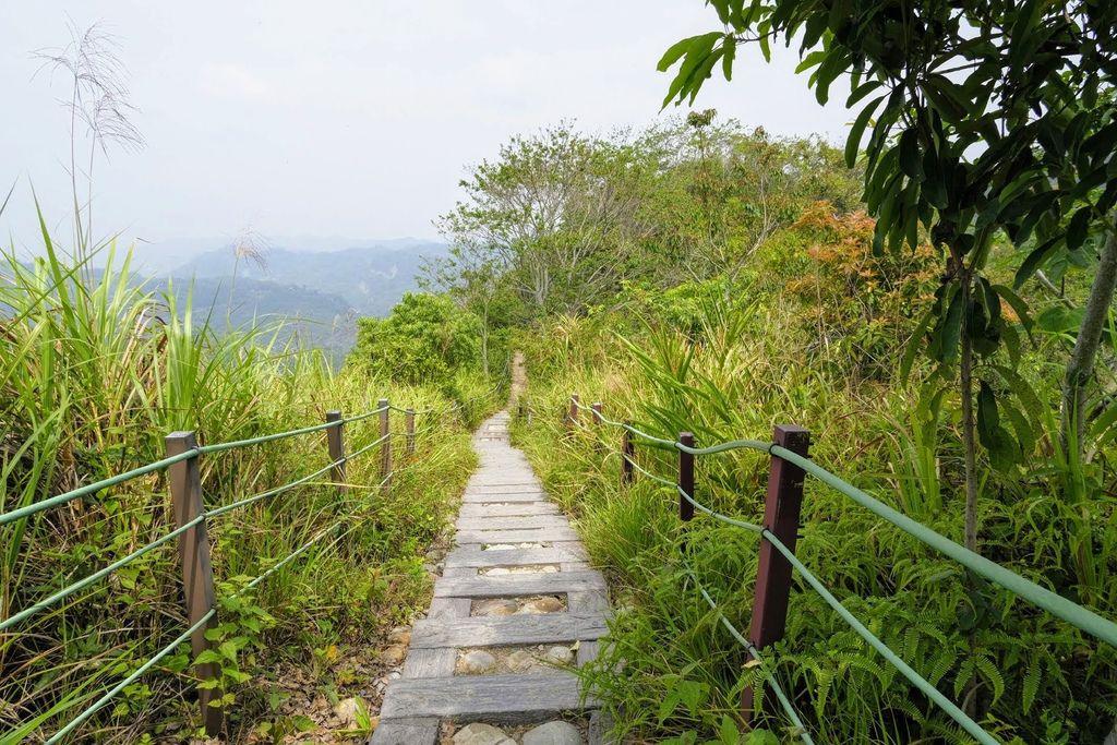 九九峰森林步道_DSF9259.jpg