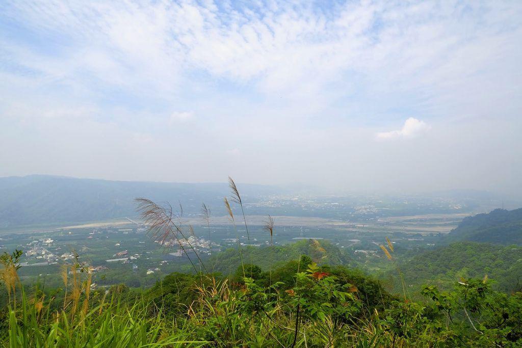 九九峰森林步道_DSF9268.jpg