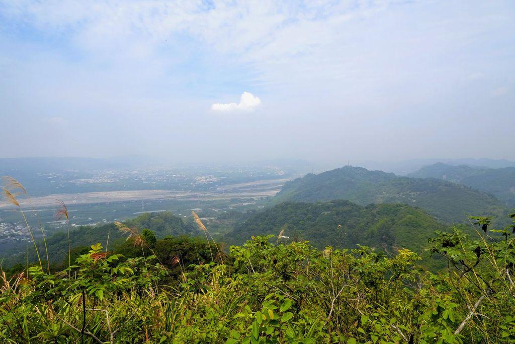 九九峰森林步道_DSF9277.jpg