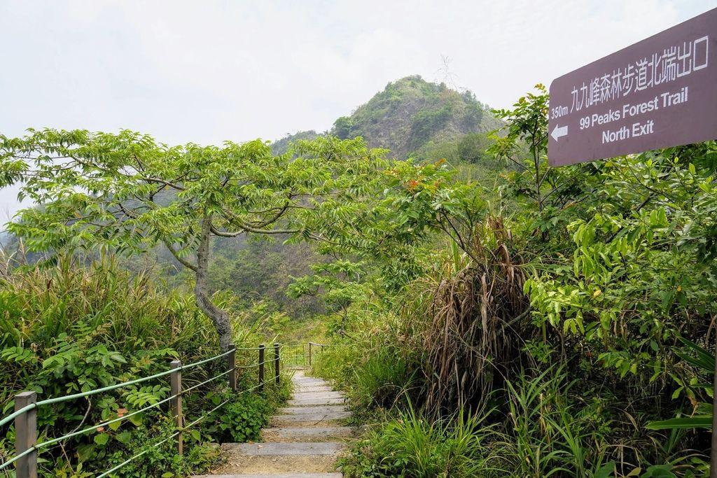 九九峰森林步道_DSF9283.jpg