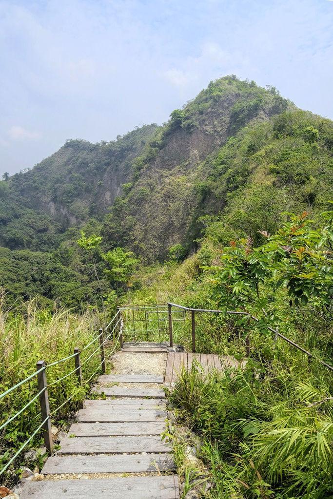 九九峰森林步道_DSF9288.jpg