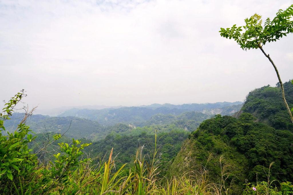 九九峰森林步道_DSF9294.0.jpg