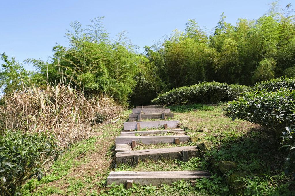 二尖山步道_DSF1894.jpg
