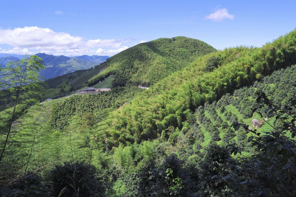 二尖山步道_DSF1937.jpg