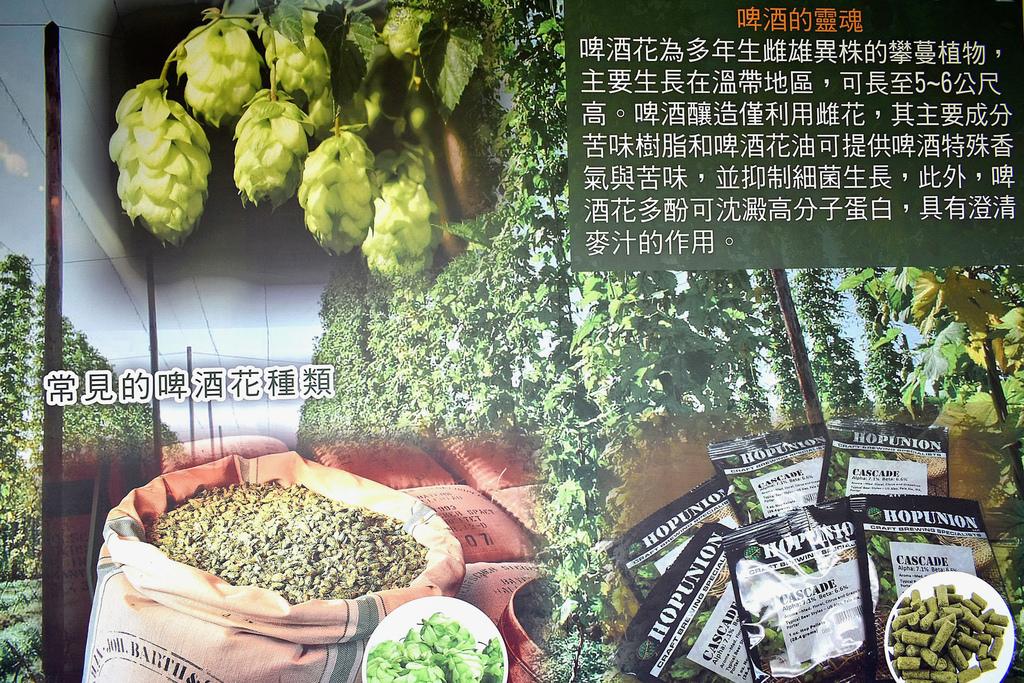 竹南啤酒廠17.jpg