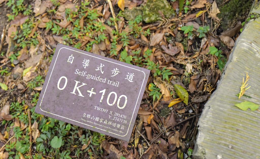 東眼山_DSC4162.jpg