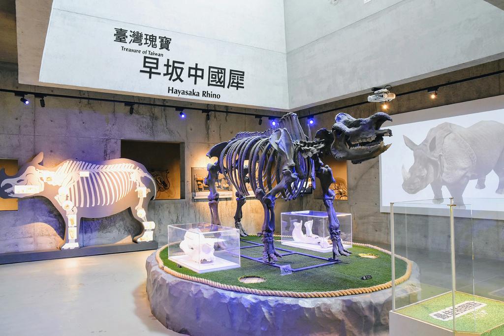 臺南左鎮化石園區_DSC5748.jpg