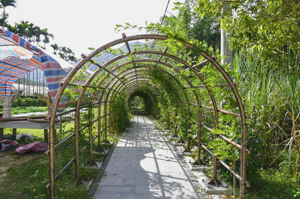 竹坑溪步道_DSC8368.jpg