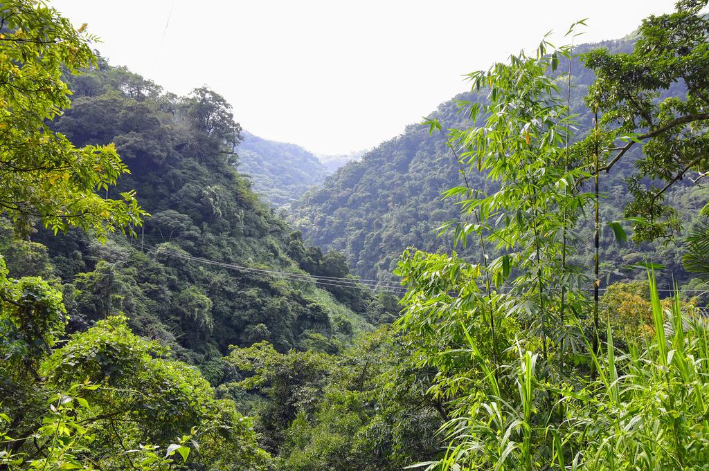 竹坑溪步道_DSC8424.jpg
